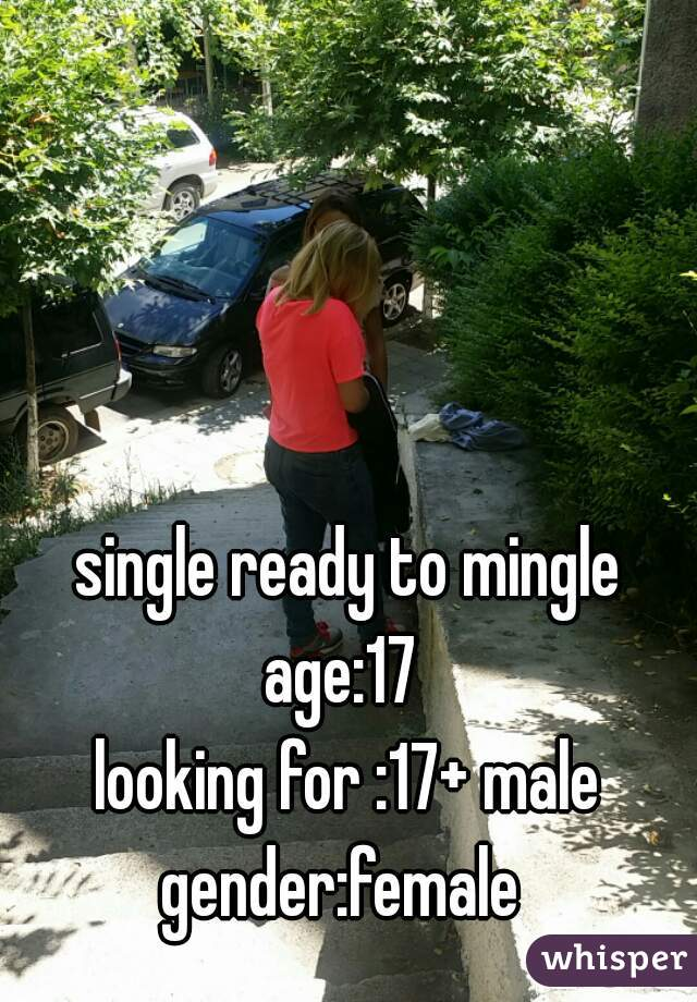 single ready to mingle age:17  looking for :17+ male gender:female