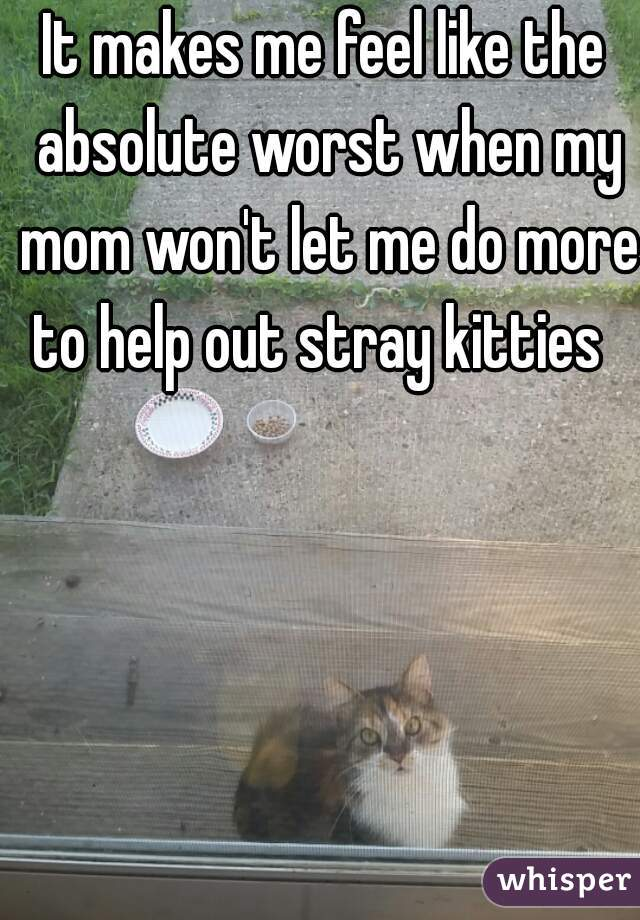 It makes me feel like the absolute worst when my mom won't let me do more to help out stray kitties