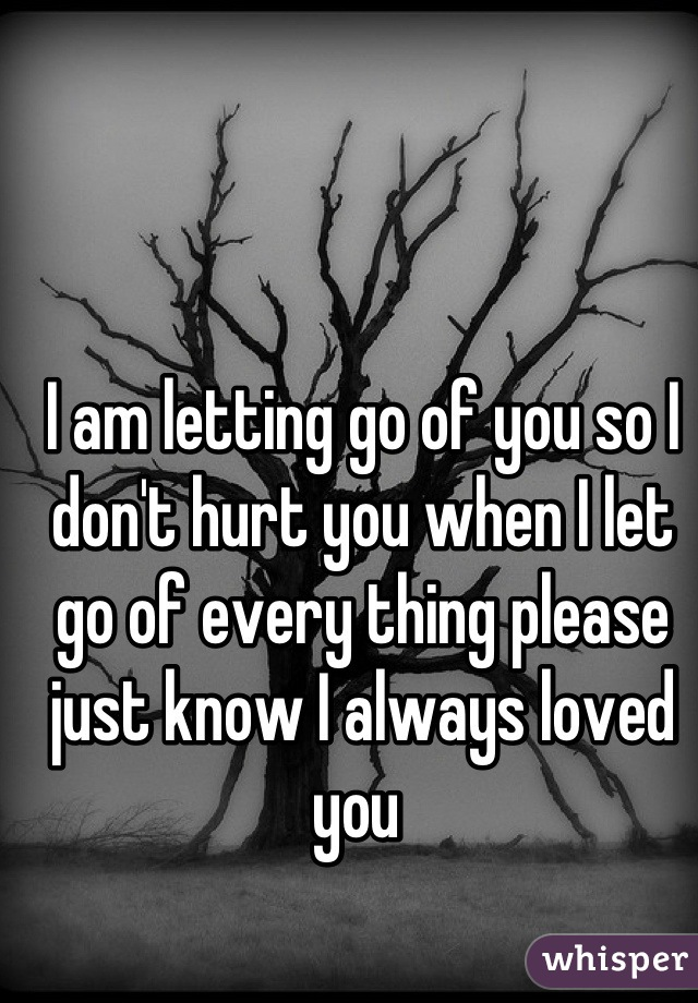 I am letting go of you so I don't hurt you when I let go of every thing please just know I always loved you