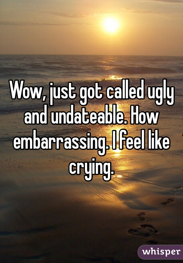 Wow, just got called ugly and undateable. How embarrassing. I feel like crying.