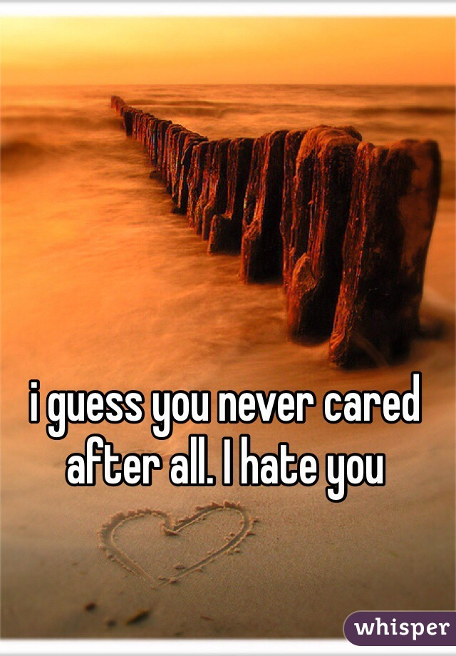 i guess you never cared after all. I hate you