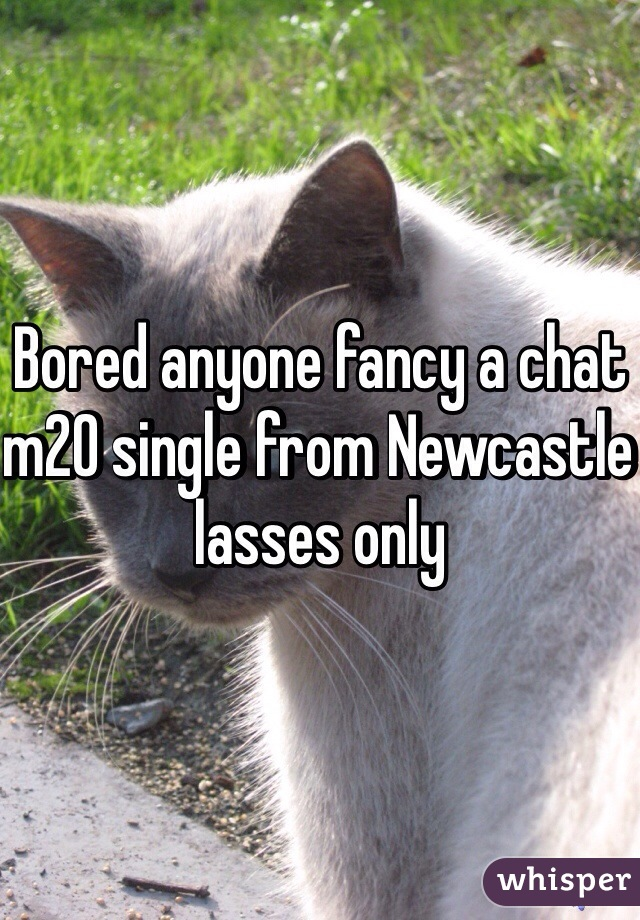 Bored anyone fancy a chat m20 single from Newcastle lasses only