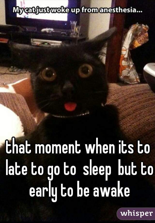 that moment when its to late to go to  sleep  but to early to be awake