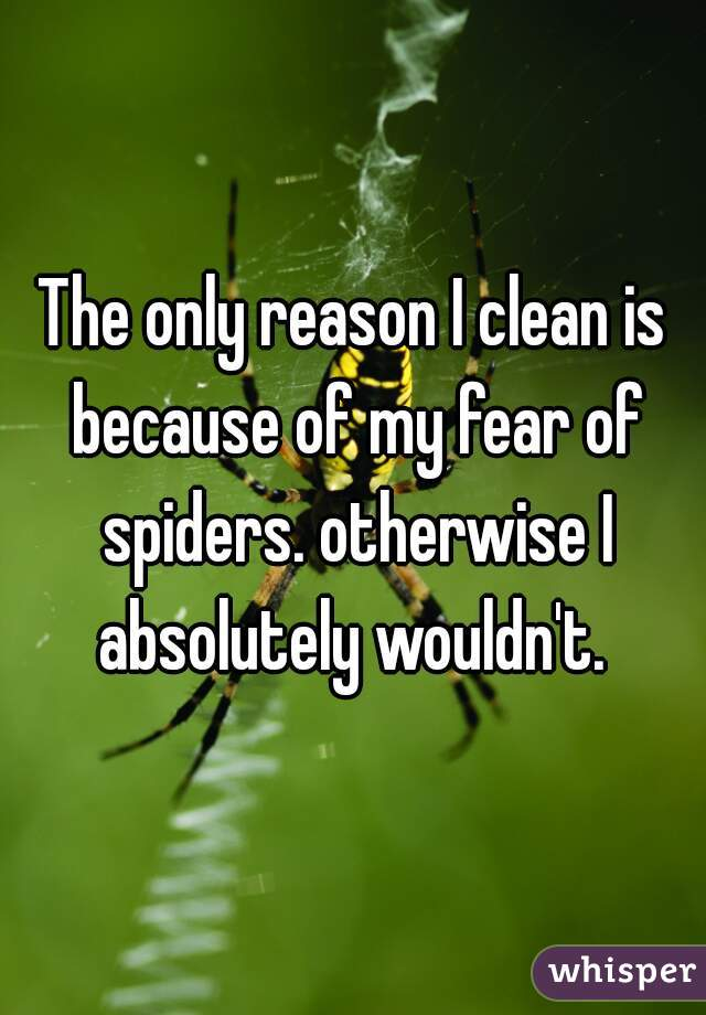 The only reason I clean is because of my fear of spiders. otherwise I absolutely wouldn't.