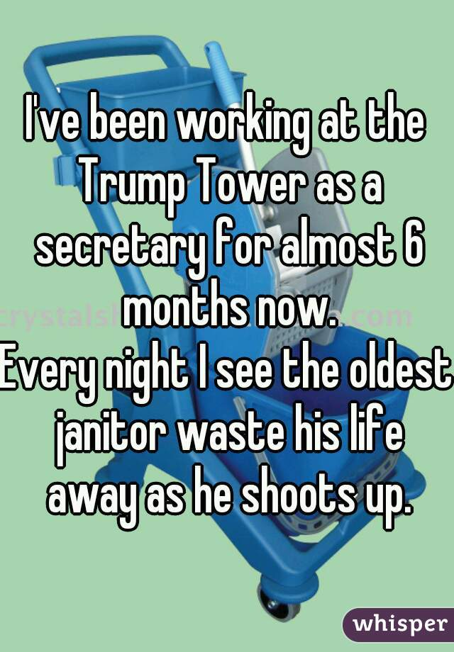 I've been working at the Trump Tower as a secretary for almost 6 months now.  Every night I see the oldest janitor waste his life away as he shoots up.