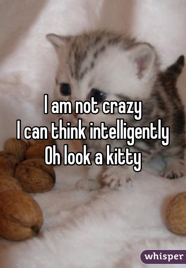 I am not crazy I can think intelligently  Oh look a kitty