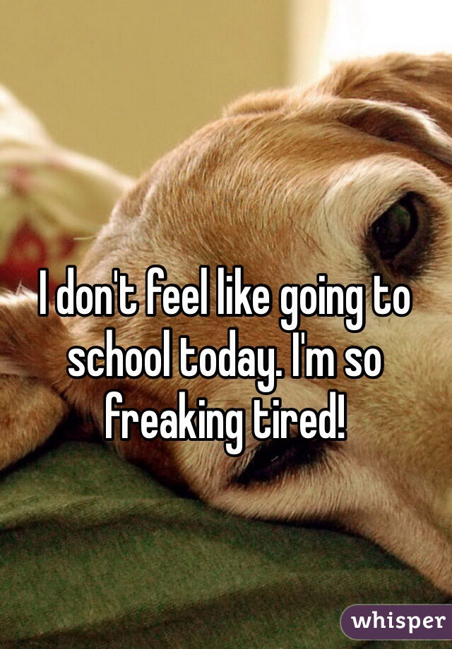I don't feel like going to school today. I'm so freaking tired!