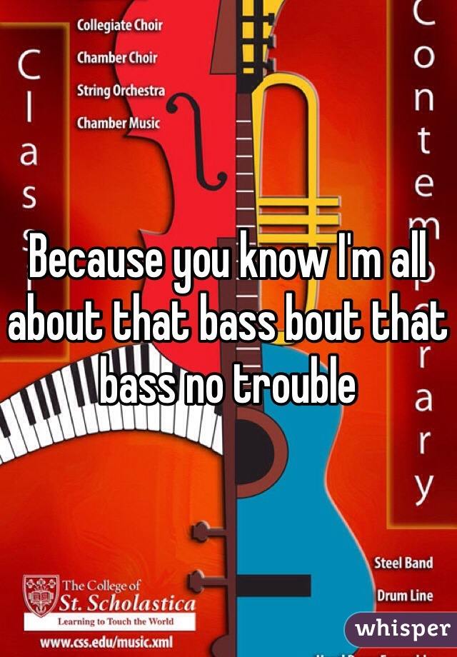 Because you know I'm all about that bass bout that bass no trouble