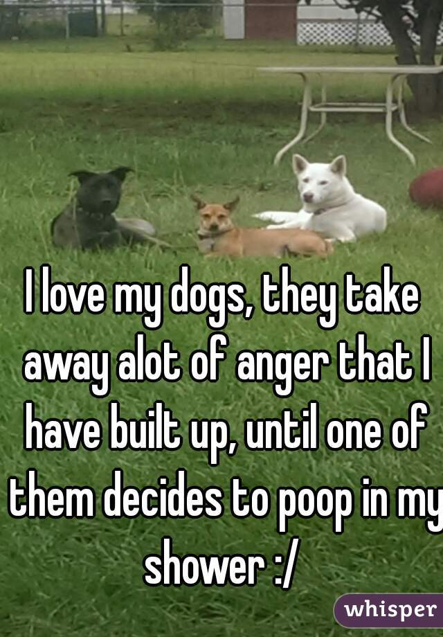 I love my dogs, they take away alot of anger that I have built up, until one of them decides to poop in my shower :/