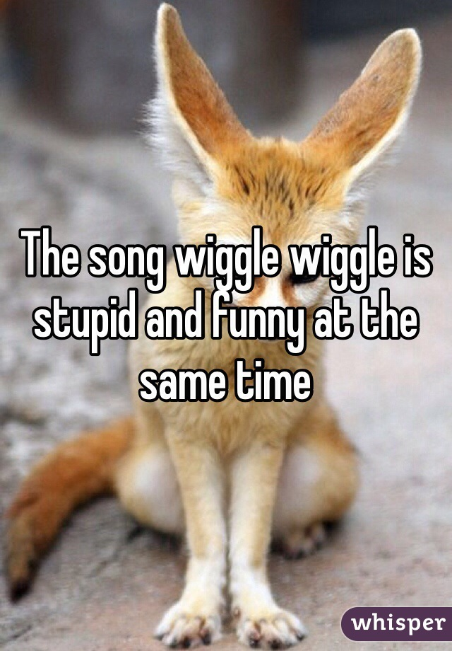 The song wiggle wiggle is stupid and funny at the same time