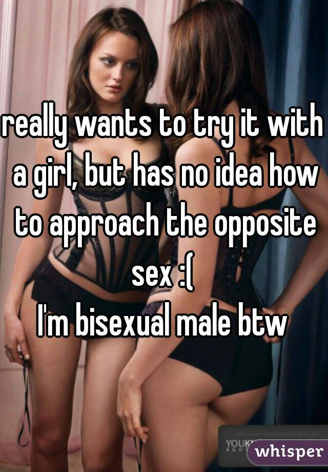 really wants to try it with a girl, but has no idea how to approach the opposite sex :(   I'm bisexual male btw