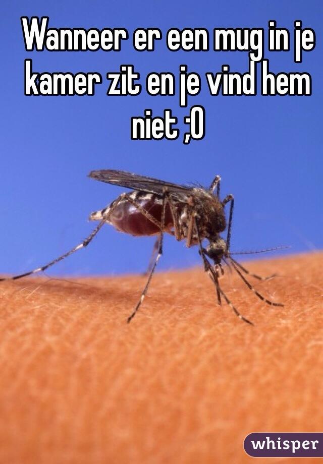 Wanneer er een mug in je kamer zit en je vind hem niet ;0