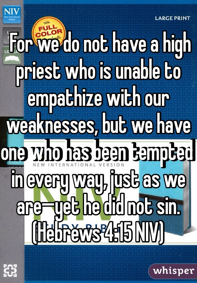 For we do not have a high priest who is unable to empathize with our weaknesses, but we have one who has been tempted in every way, just as we are—yet he did not sin. (‭Hebrews‬ ‭4‬:‭15‬ NIV)