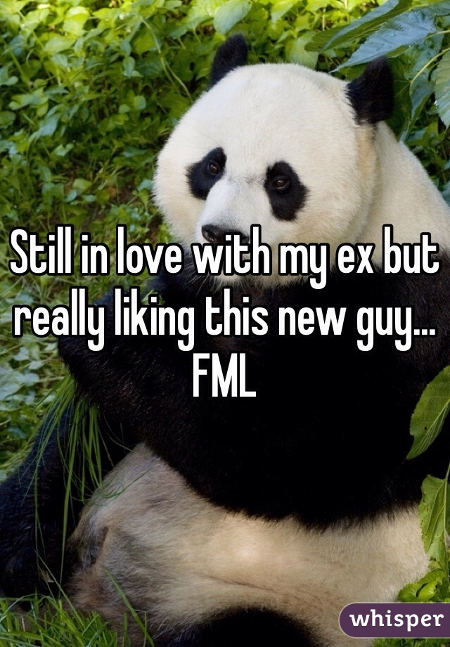Still in love with my ex but really liking this new guy... FML