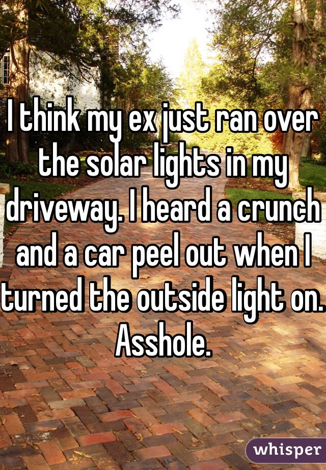 I think my ex just ran over the solar lights in my driveway. I heard a crunch and a car peel out when I turned the outside light on. Asshole.