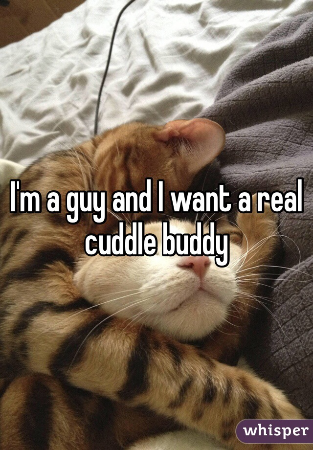 I'm a guy and I want a real cuddle buddy