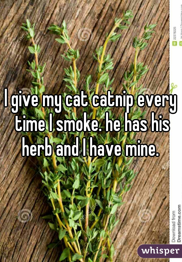 I give my cat catnip every time I smoke. he has his herb and I have mine.
