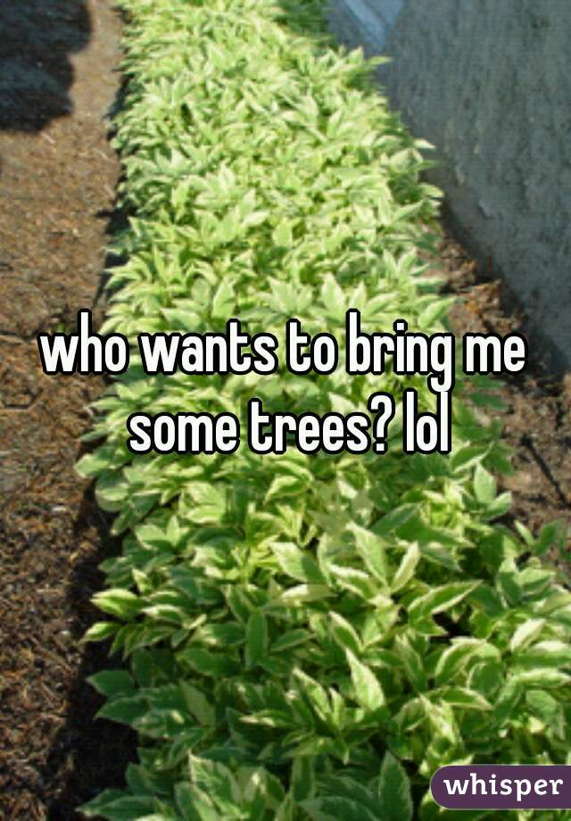 who wants to bring me some trees? lol