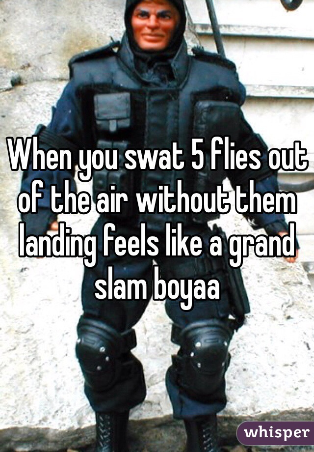 When you swat 5 flies out of the air without them landing feels like a grand slam boyaa