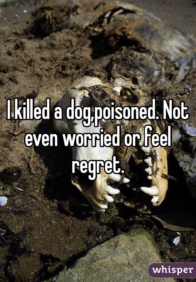 I killed a dog,poisoned. Not even worried or feel regret.