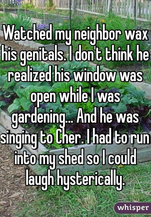 Watched my neighbor wax his genitals. I don't think he realized his window was open while I was gardening... And he was singing to Cher. I had to run into my shed so I could laugh hysterically.