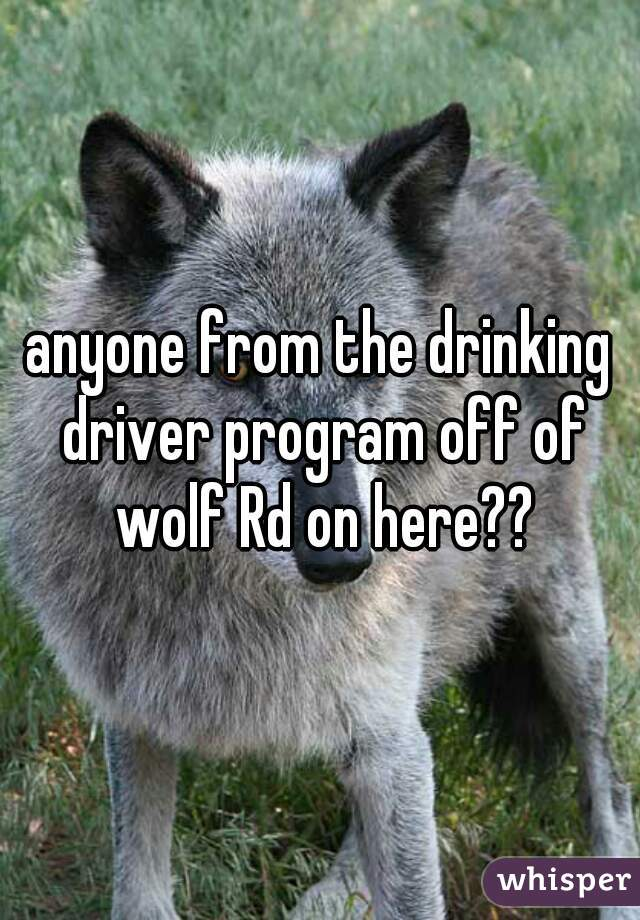 anyone from the drinking driver program off of wolf Rd on here??