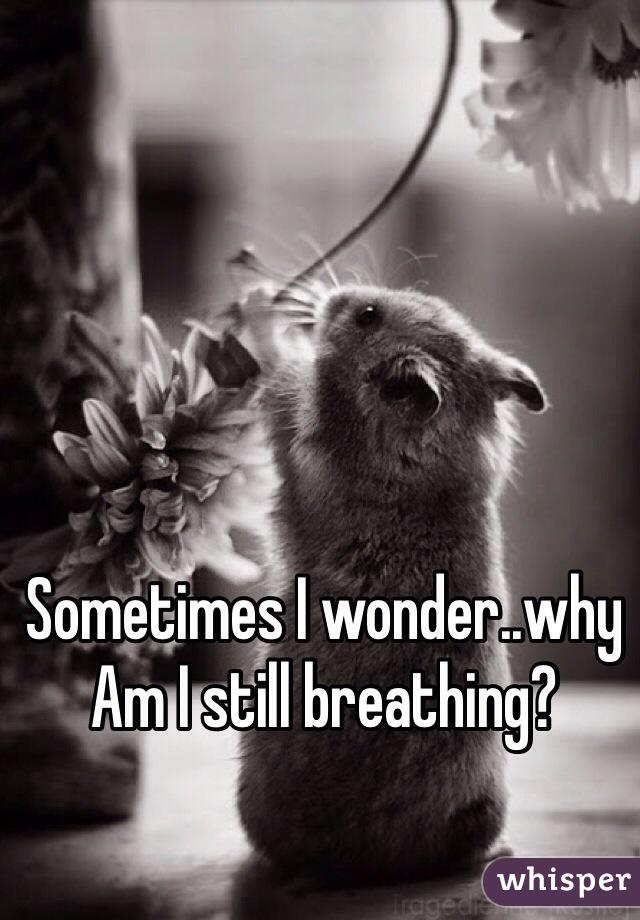 Sometimes I wonder..why Am I still breathing?