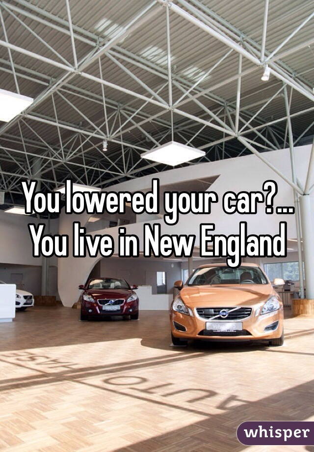 You lowered your car?... You live in New England