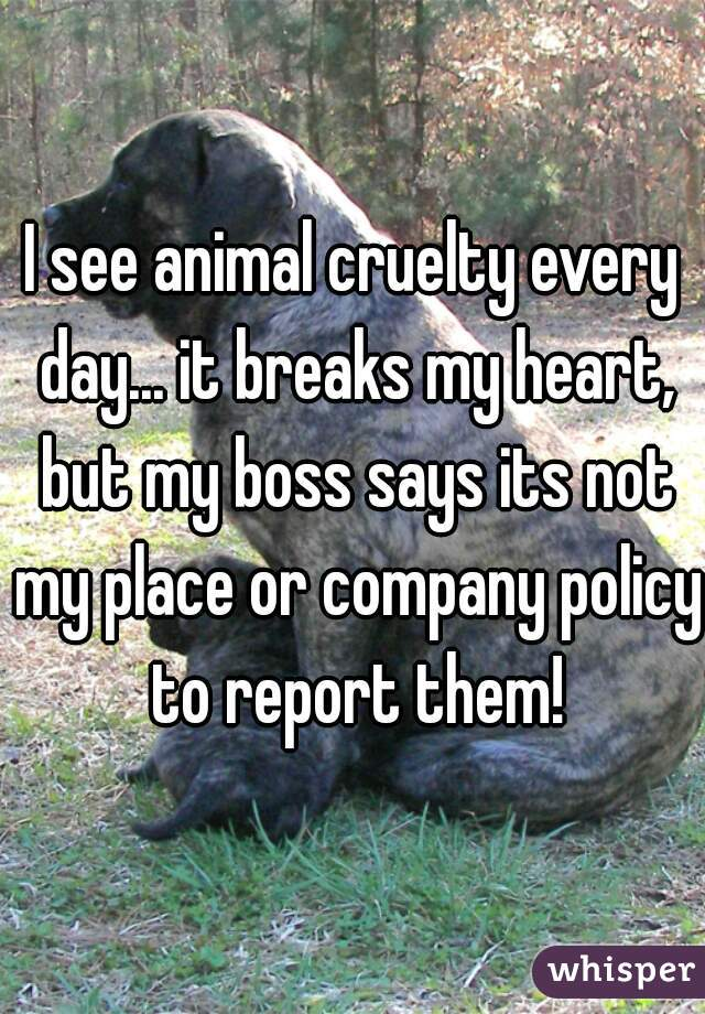 I see animal cruelty every day... it breaks my heart, but my boss says its not my place or company policy to report them!