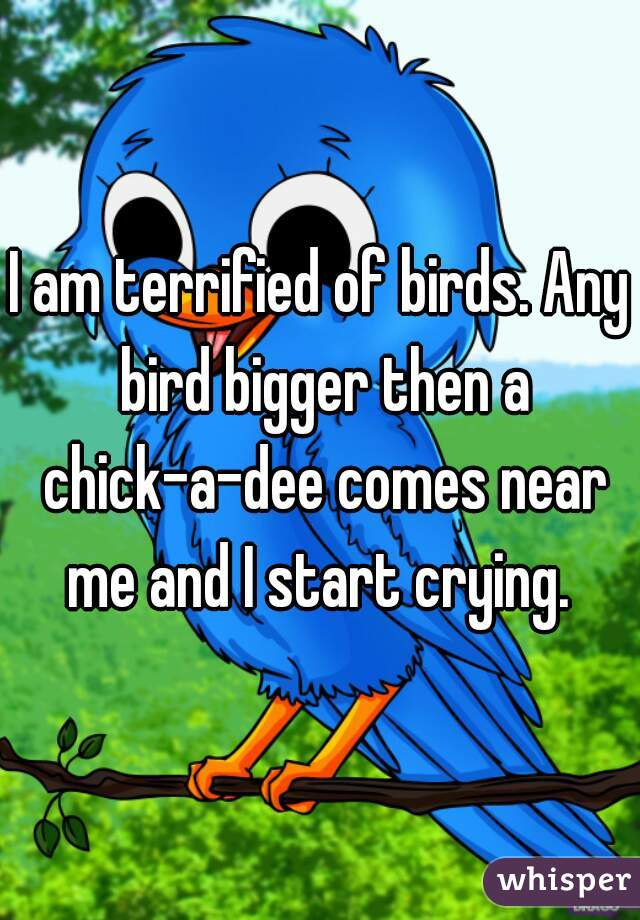 I am terrified of birds. Any bird bigger then a chick-a-dee comes near me and I start crying.