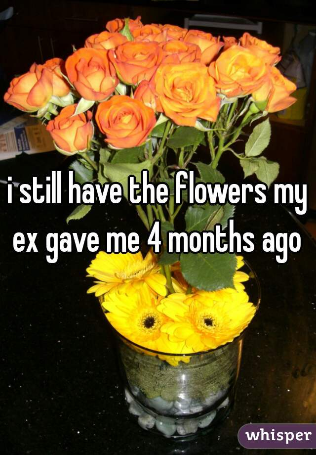 i still have the flowers my ex gave me 4 months ago