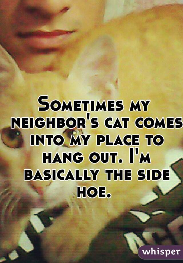 Sometimes my neighbor's cat comes into my place to hang out. I'm basically the side hoe.