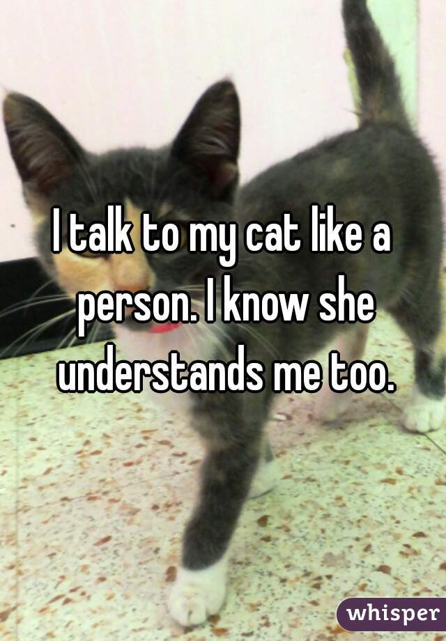 I talk to my cat like a person. I know she understands me too.