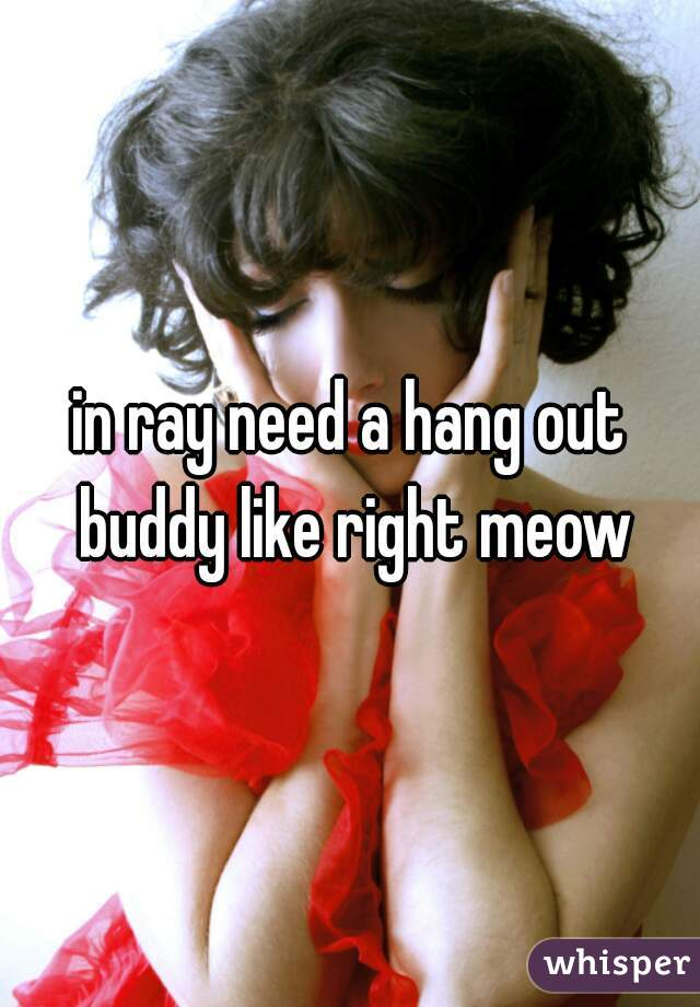 in ray need a hang out buddy like right meow