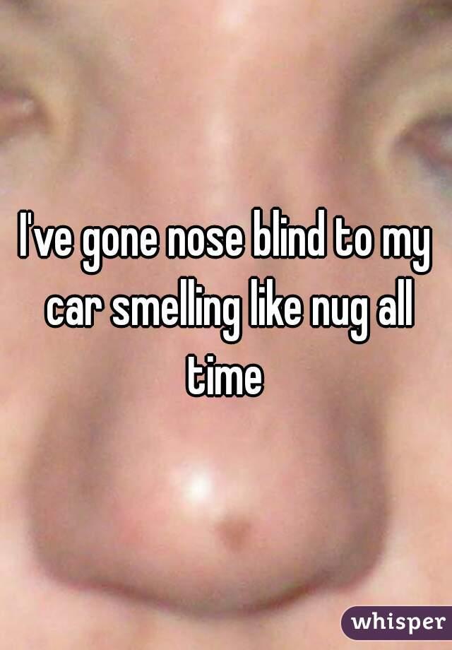 I've gone nose blind to my car smelling like nug all time