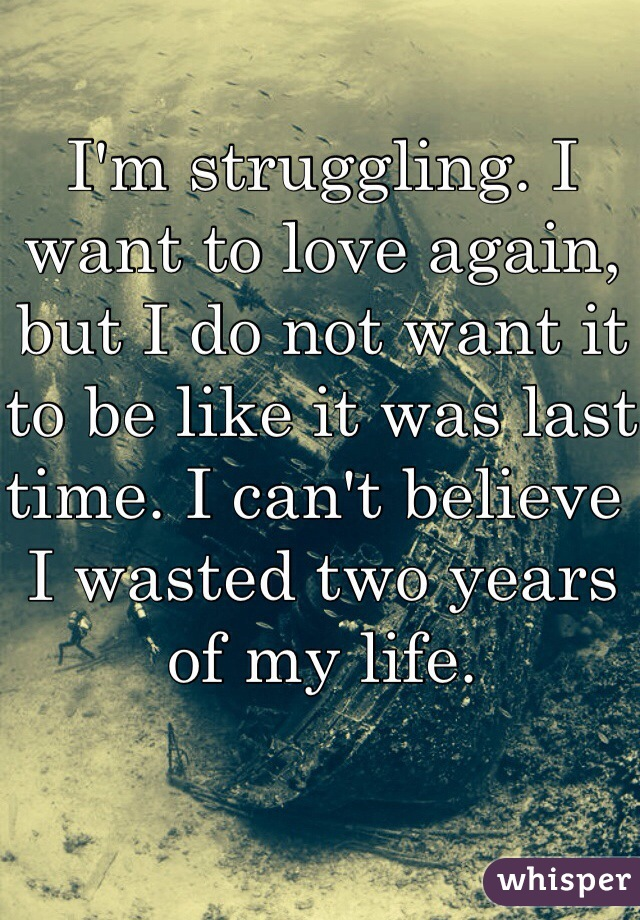 I'm struggling. I want to love again, but I do not want it to be like it was last time. I can't believe I wasted two years of my life.