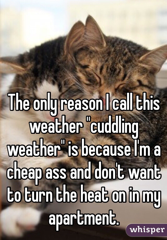 """The only reason I call this weather """"cuddling weather"""" is because I'm a cheap ass and don't want to turn the heat on in my apartment."""