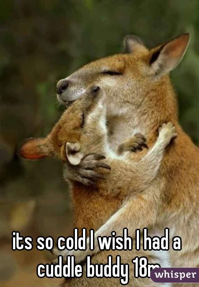 its so cold I wish I had a cuddle buddy 18m