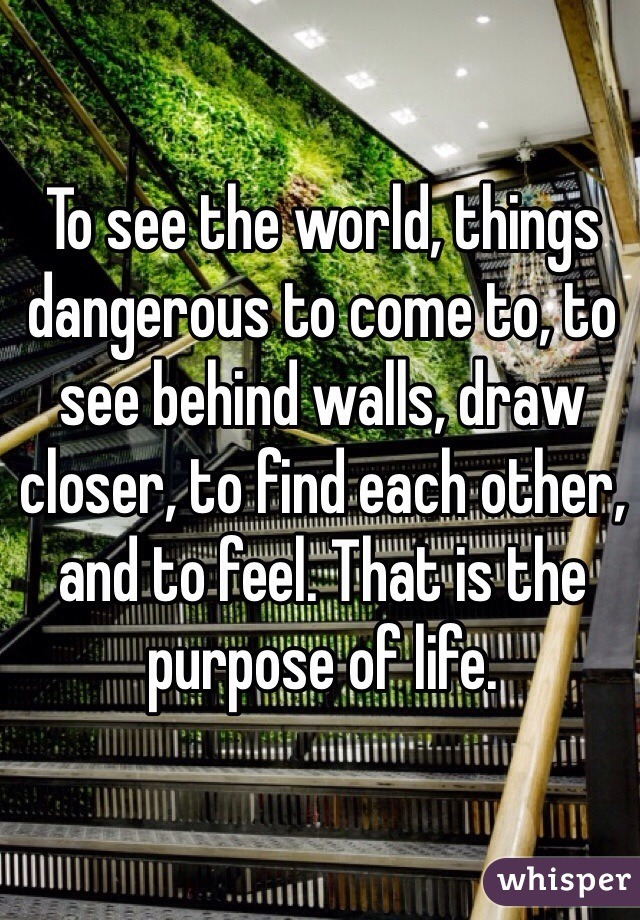 To see the world, things dangerous to come to, to see behind walls, draw closer, to find each other, and to feel. That is the purpose of life.