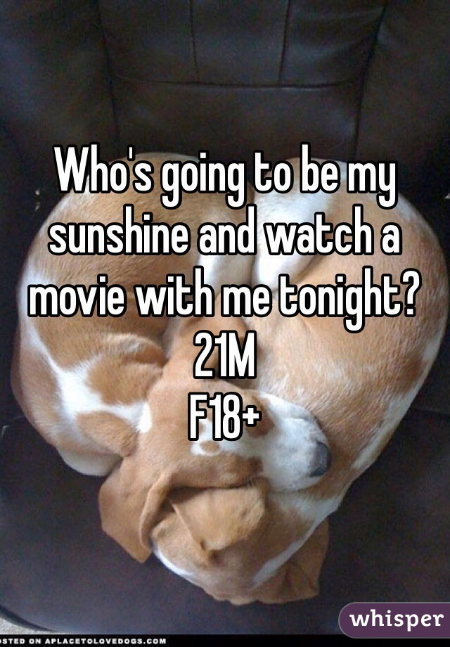Who's going to be my sunshine and watch a movie with me tonight? 21M F18+
