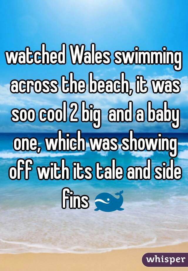 watched Wales swimming across the beach, it was soo cool 2 big  and a baby one, which was showing off with its tale and side fins 🐋