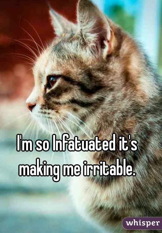 I'm so Infatuated it's making me irritable.