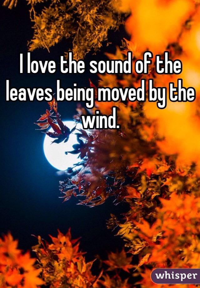 I love the sound of the leaves being moved by the wind.