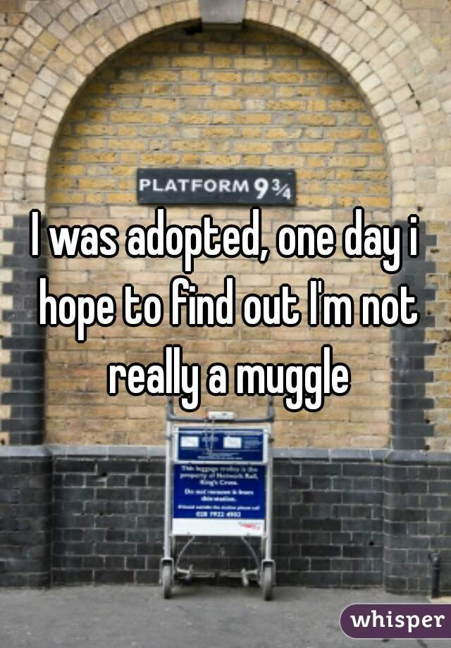 I was adopted, one day i hope to find out I'm not really a muggle