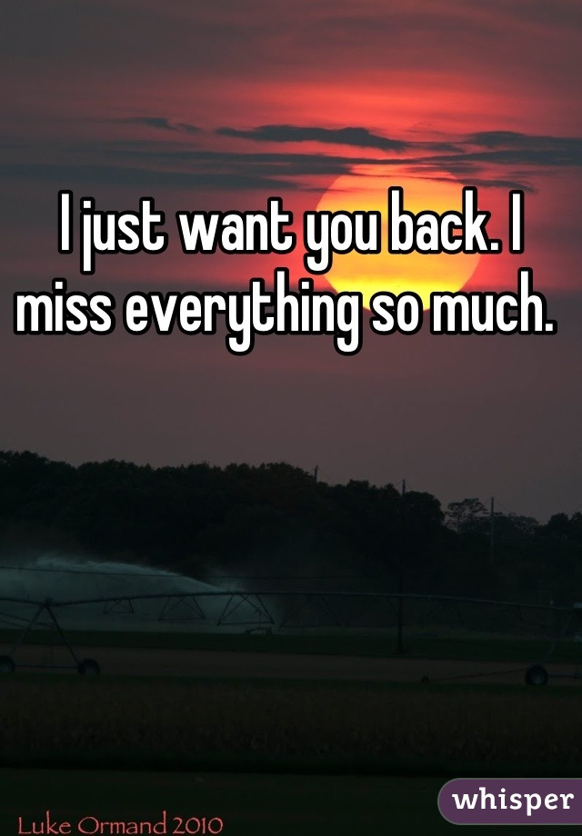 I just want you back. I miss everything so much.