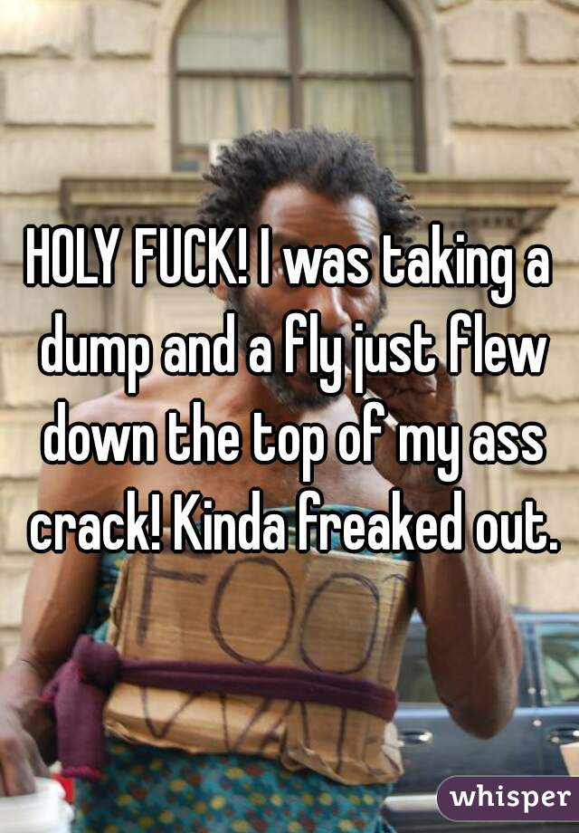 HOLY FUCK! I was taking a dump and a fly just flew down the top of my ass crack! Kinda freaked out.