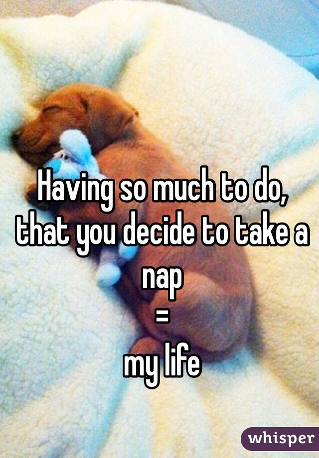 Having so much to do, that you decide to take a nap = my life