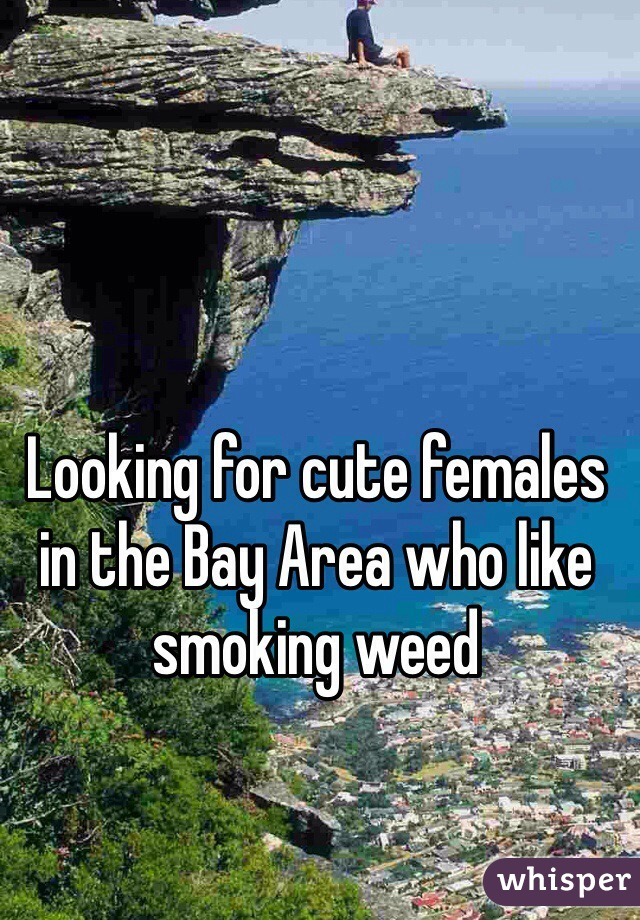 Looking for cute females in the Bay Area who like smoking weed