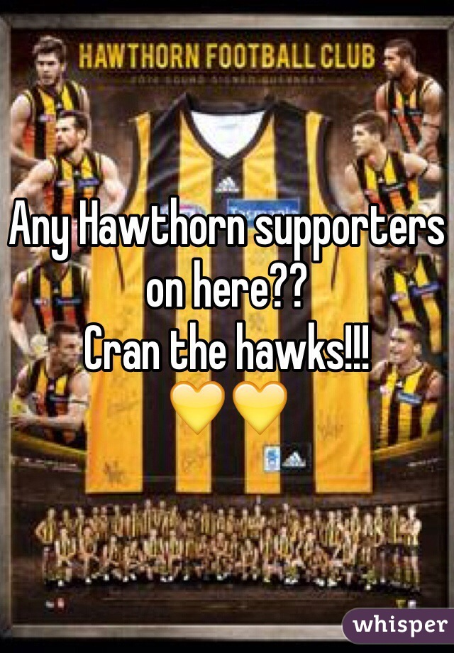 Any Hawthorn supporters on here??  Cran the hawks!!!  💛💛