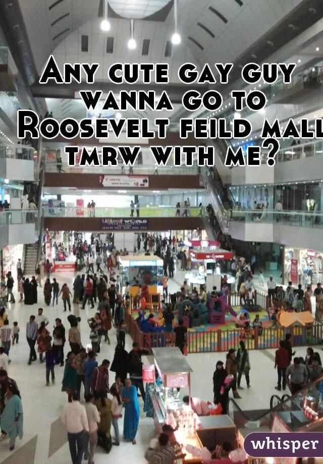 Any cute gay guy wanna go to Roosevelt feild mall tmrw with me?